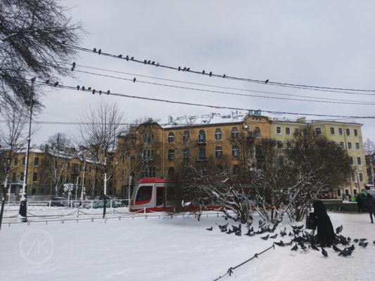 三月的聖彼得堡